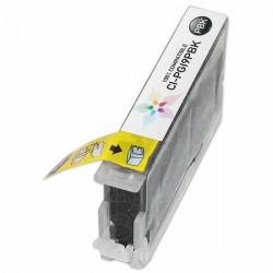 PGI-9PBK mit Chip kompatible Patrone