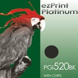 Platinum PGI-520BK mit Chip kompatible Patrrone