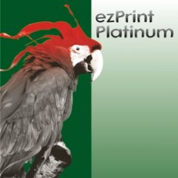 Platinum CLI-521GY grau mit chip